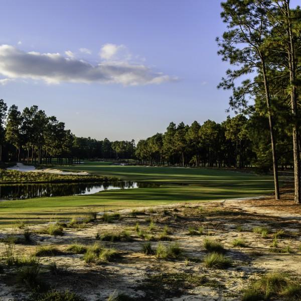 Pinehurst Resort Course #2 Hole 16